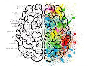 cerveau-personnalite