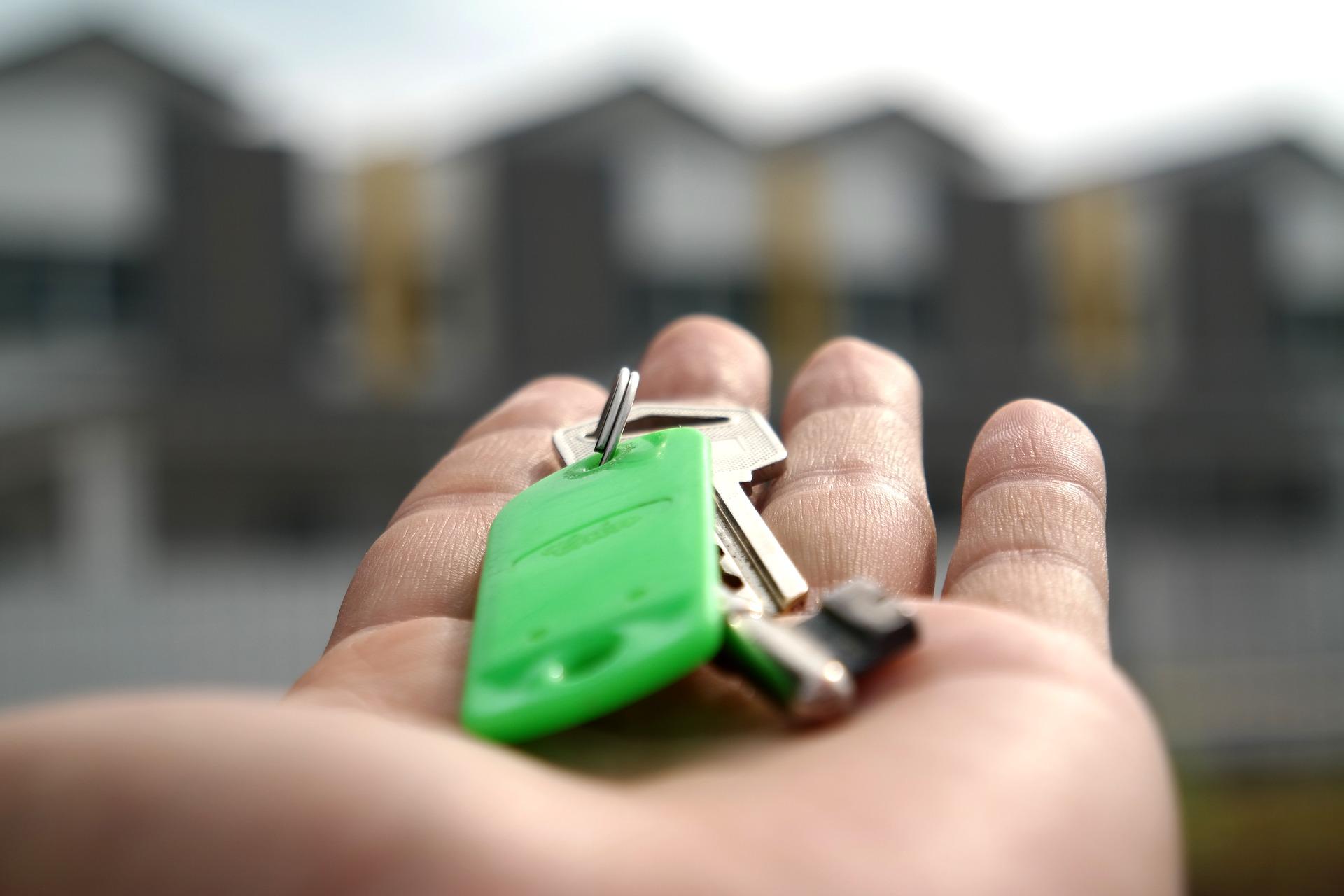 gestion immobilière locataires droit